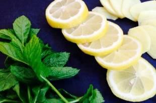 Zutaten für eine gesunde und kohlenhydratarme Ingwer-Minzlimonade