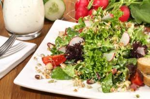 Ein knackiger Wildkräutersalat aus der Low-Carb-Küche
