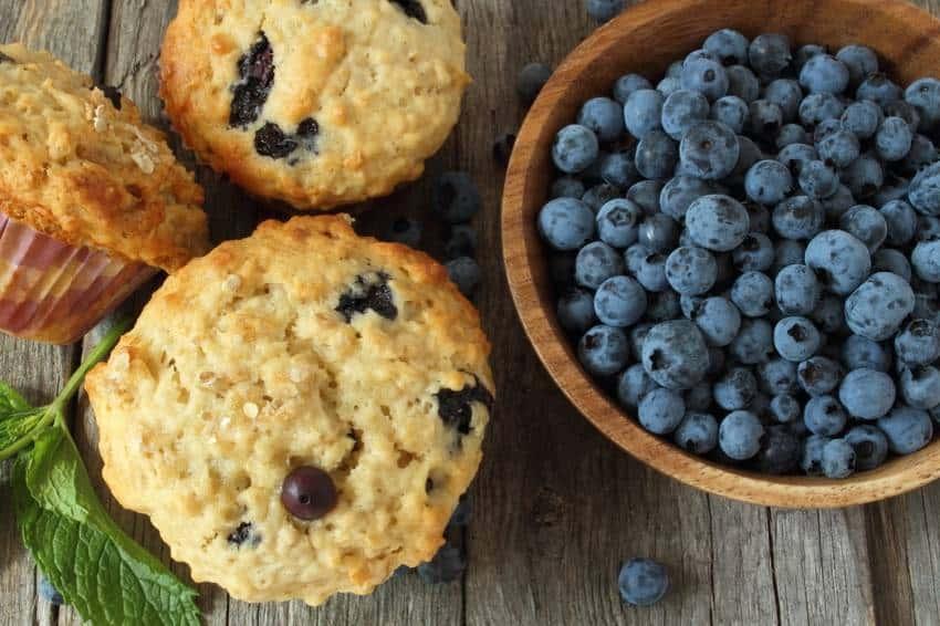 Vanille-Blaubeer-Muffins – einfach Low Carb