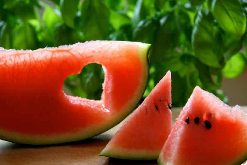 Low Carb - sich bewusst und gesund satt essen!