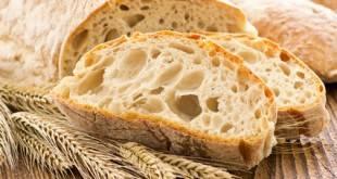 Low Carb Rezepte für Brot und Brötchen